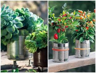 Vaso de lata para o jardim