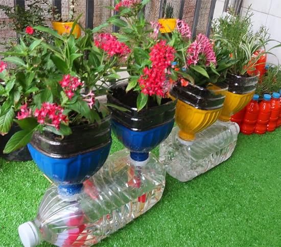 Recicle garrafas PET no jardim