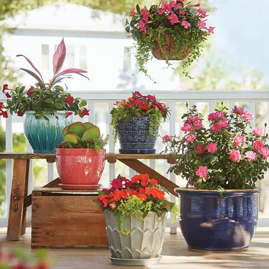 Vasos pendurados para decoração