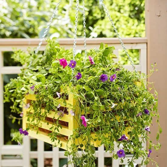 Decore sua casa com vaso pendurado
