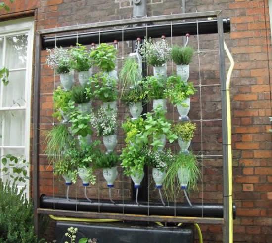 Decore sua casa com vasos pendurados