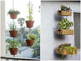 Decoração com plantas penduradas