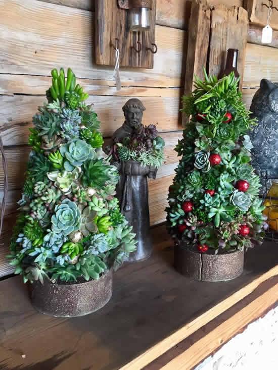 Linda Árvore de Natal com suculentas