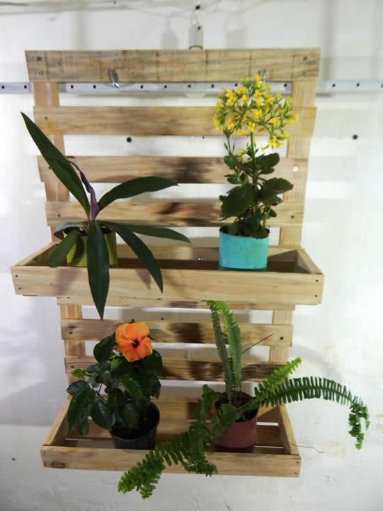 Decoração com plantas em pallets de madeira
