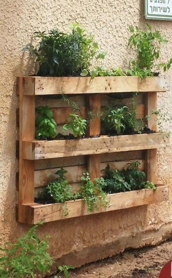 Decoração com plantas e pallets de madeira