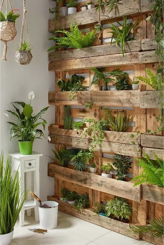 Palete com plantas