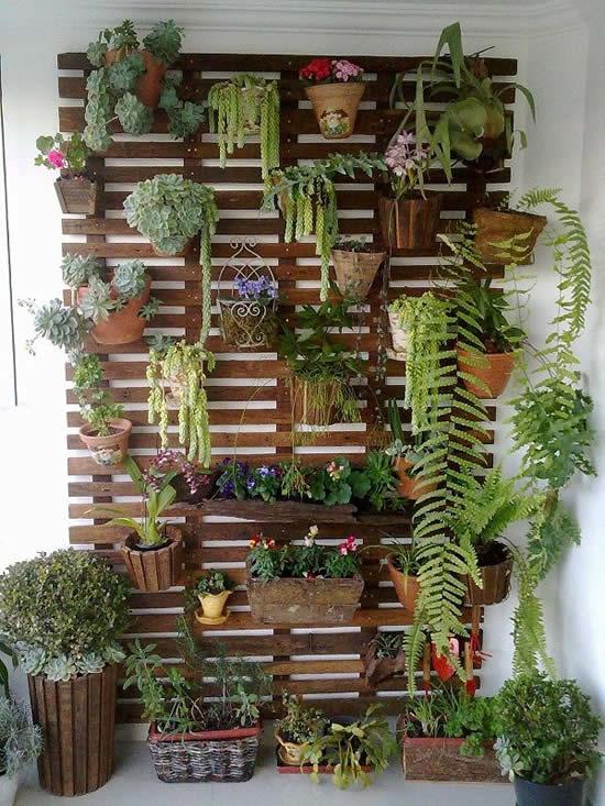 Paletes com plantas