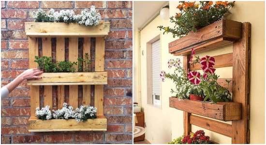 Paletes com plantas: 20+ ideias lindas