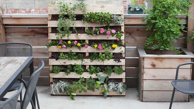Dicas e ideias para decorar jardim e quintal pequeno
