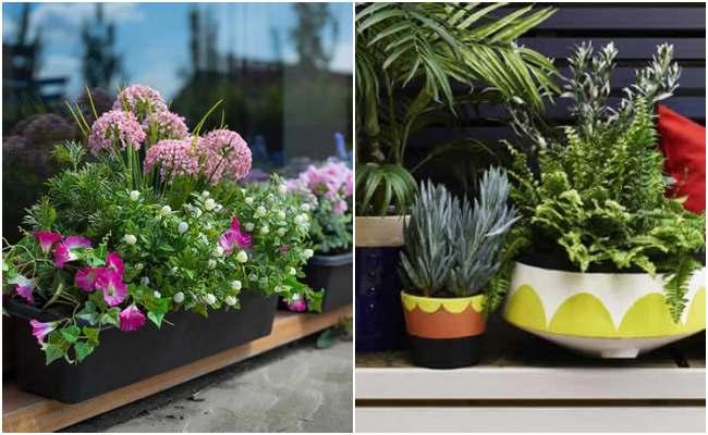 Decoração barata para jardim pequeno
