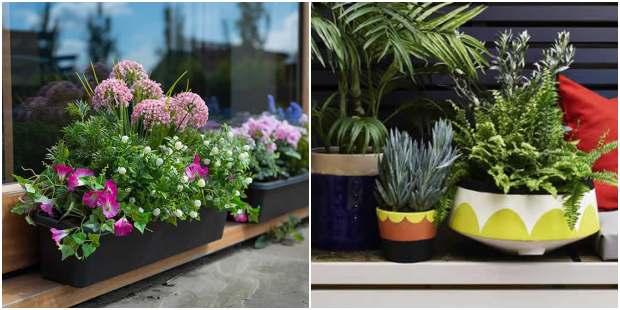 Decoração para jardim pequeno